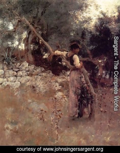 Sargent - Capri Girl (or Among the Olive Trees, Capri)