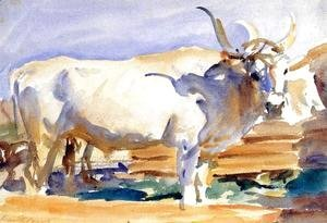 Sargent - White Ox at Siena