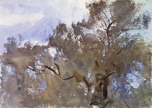 Sargent - Treetops against Sky